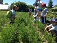 Kids Farm Volunteer Naturalist