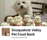Feeding the dogs & cats in the Snoqualmie Valley