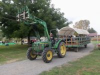 Farm Faire Help in September- SnoValley Tilth