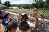 Kids Farm Volunteer Naturalist