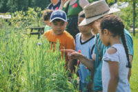 Kids' Farm Naturalist Volunteer