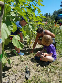 Summer Farm Camp Volunteer Instructors Needed!