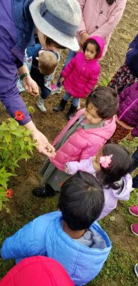 Fall Kids' Farm Naturalist